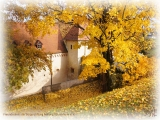 Die Rüsselsheimer Festung im Herbst