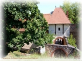 Die Rüsselsheimer Festung im Sommer