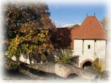 Die Rüsselsheimer Festung im Spätsommer